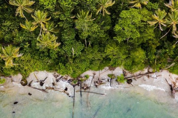 Costa Rica Now Named 'UN Champion of the Earth' for 2019